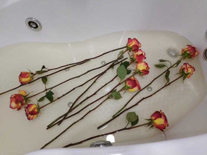 положить розы в ванну с холодной водой