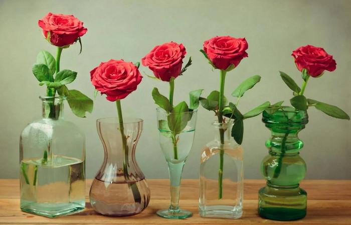 как сделать чтобы розы дольше стояли